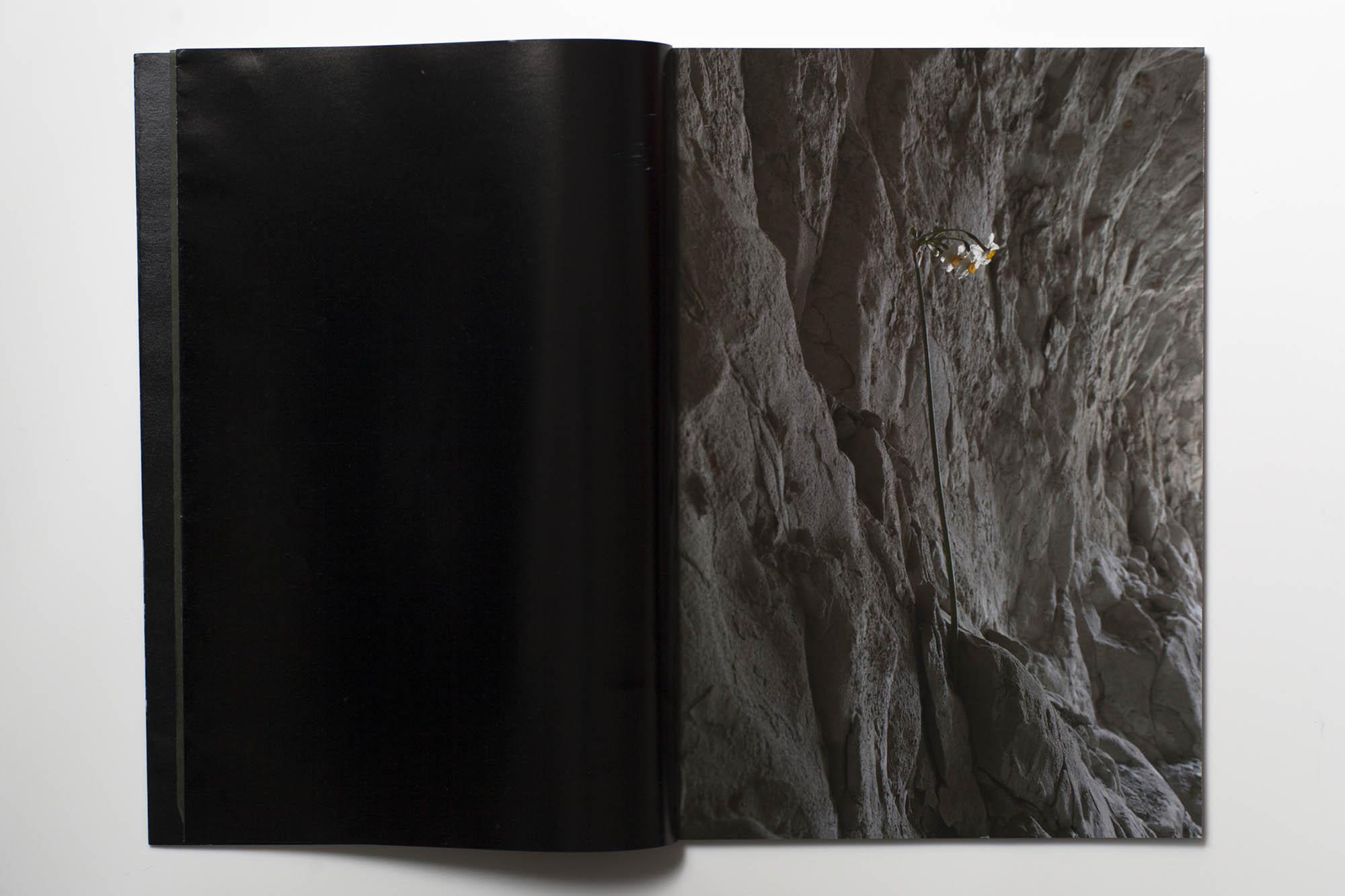 HANA 上野雄次 中里和人 作品集 装幀 デザイン 中面3