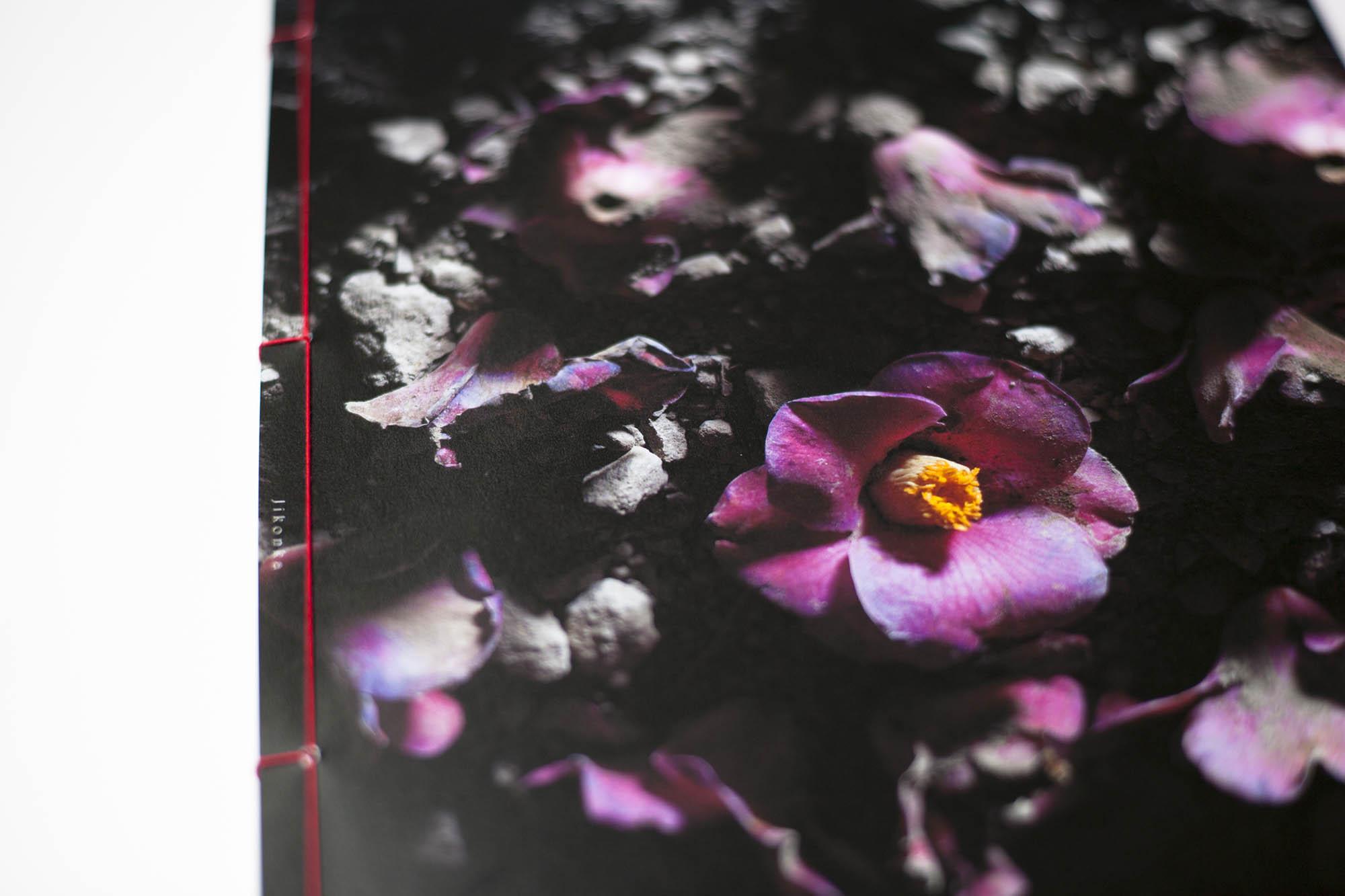 HANA 上野雄次 中里和人 作品集 装幀 デザイン 和綴じ近影