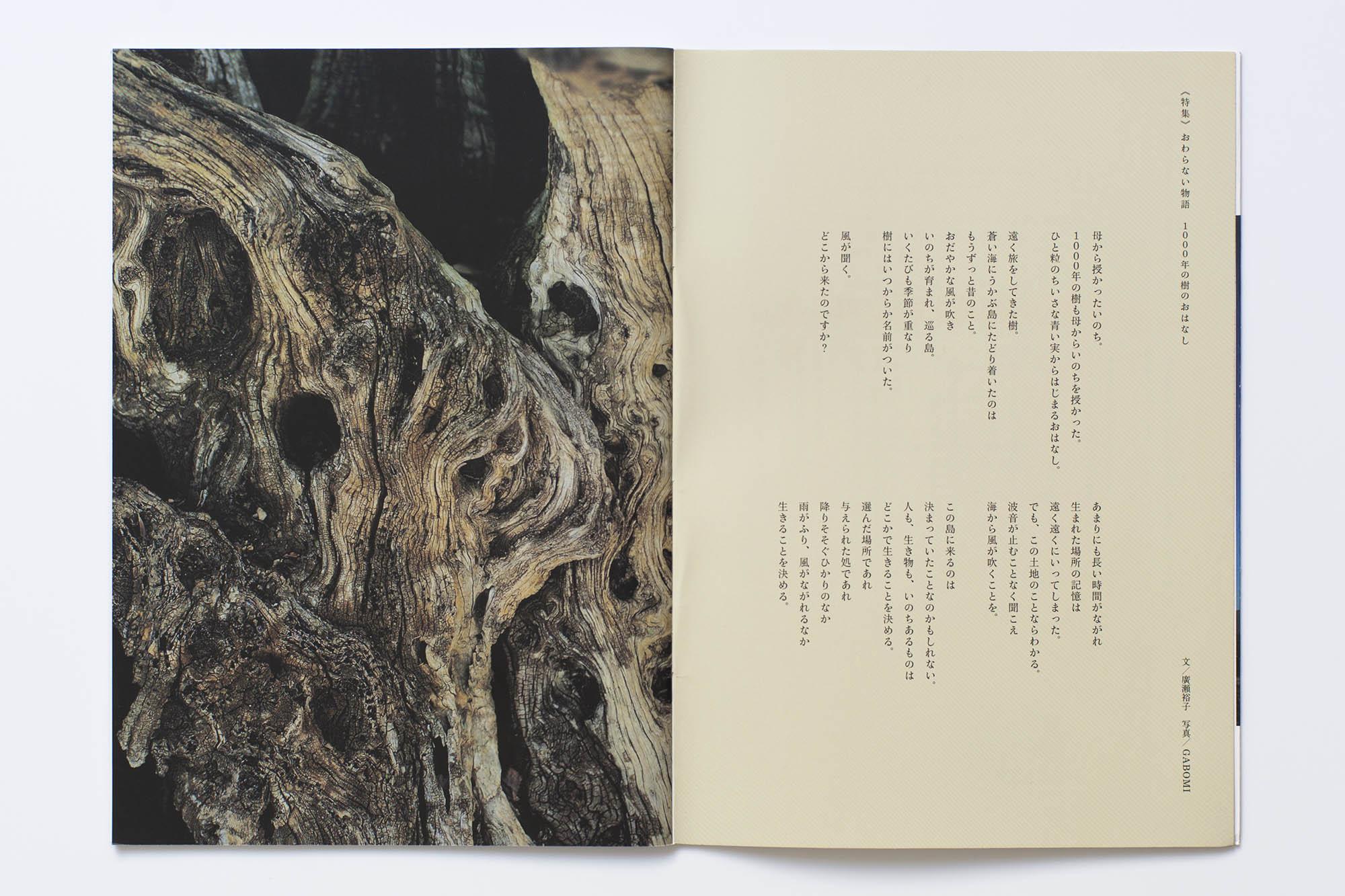 book_03_33