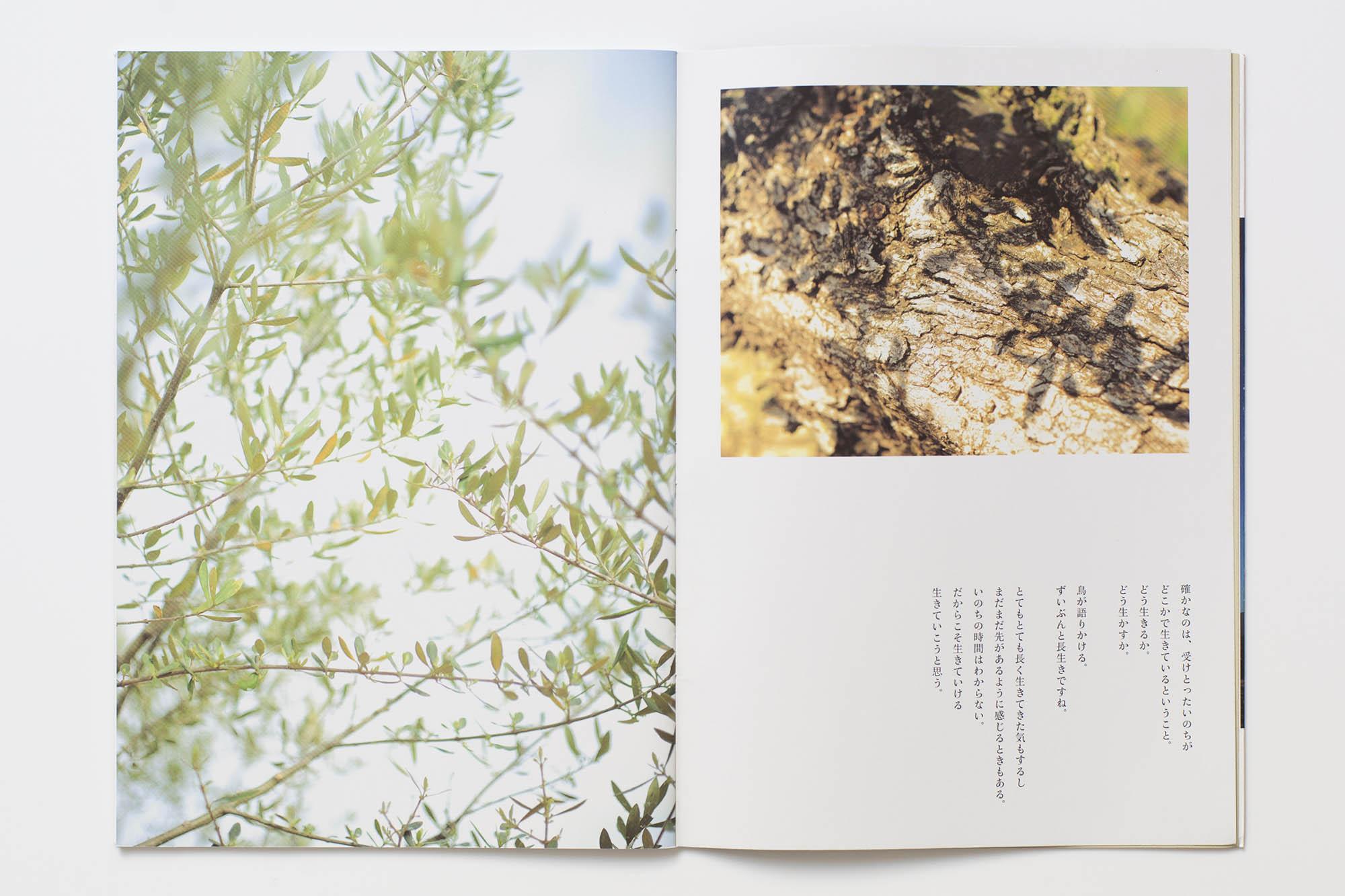 book_03_34