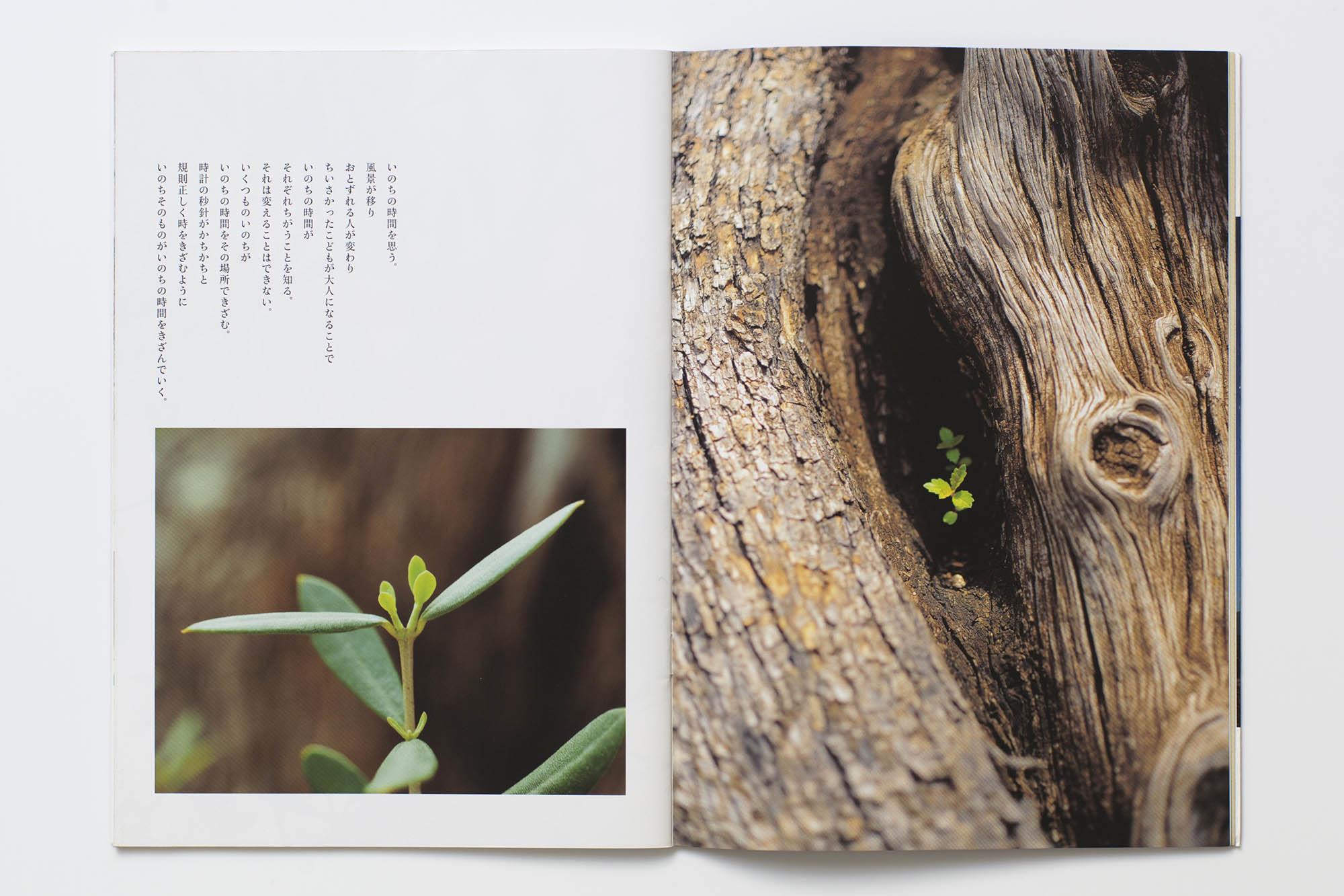 book_03_35