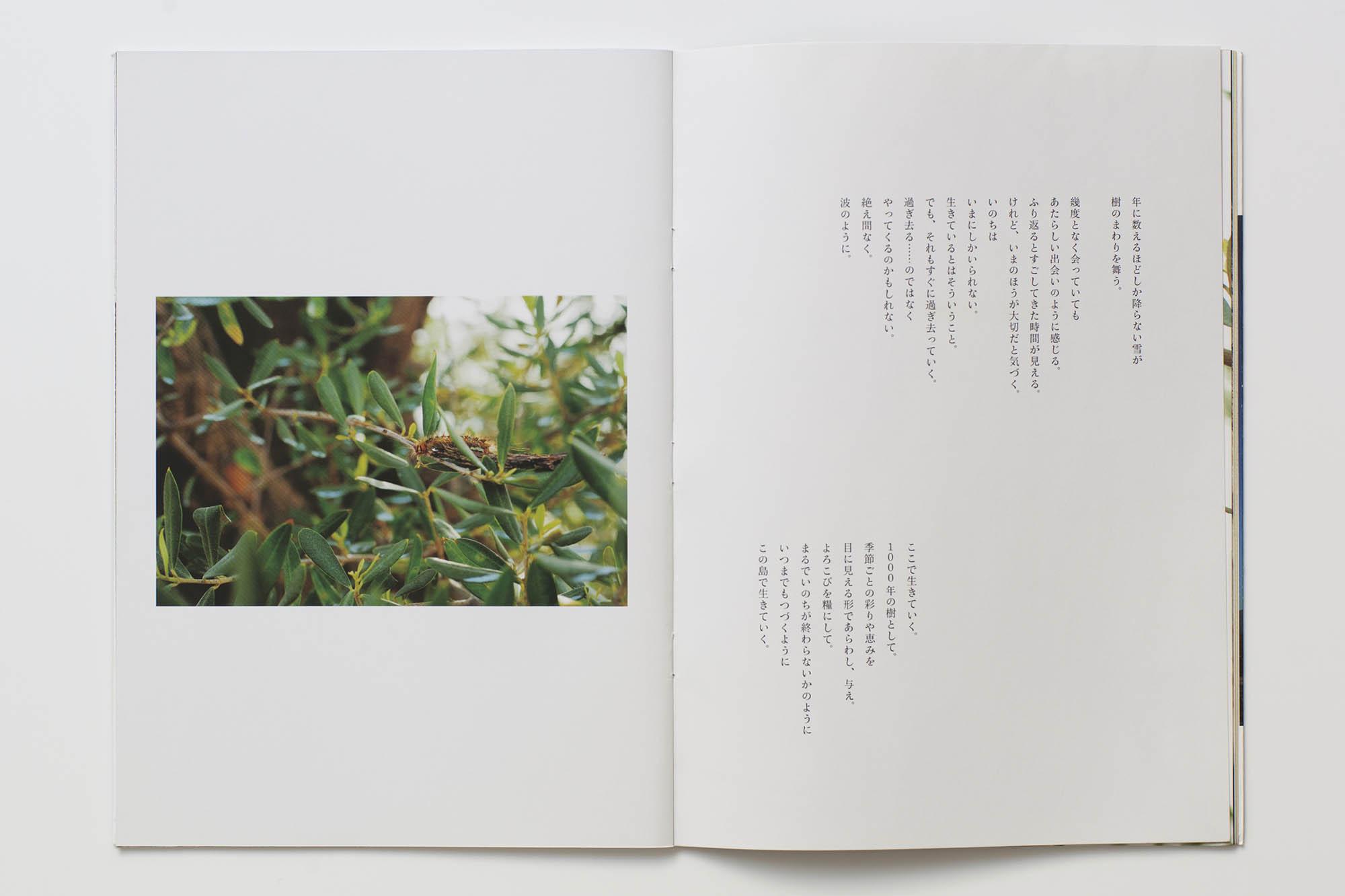book_03_36