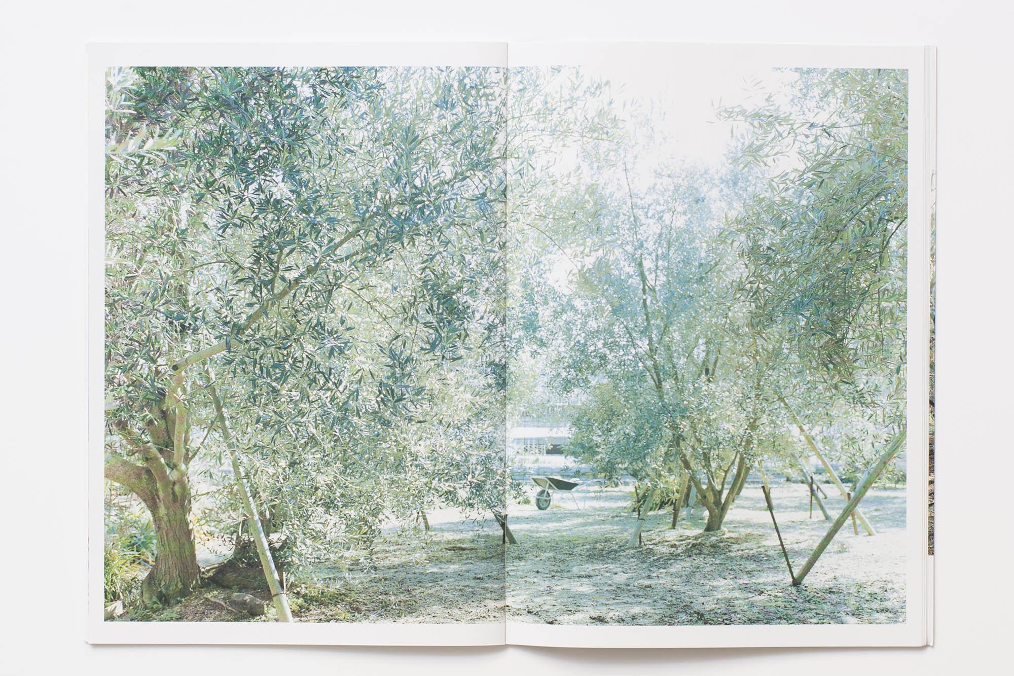 book_03_45