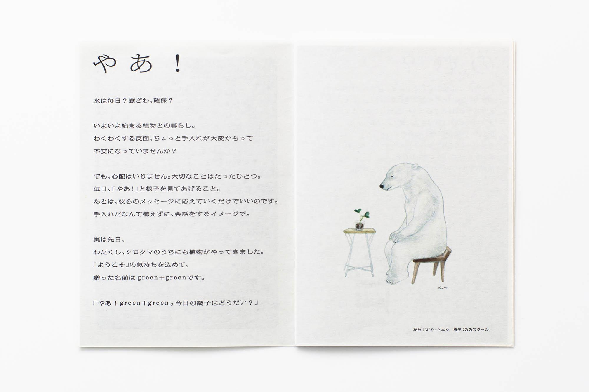 leaflet_DM_39