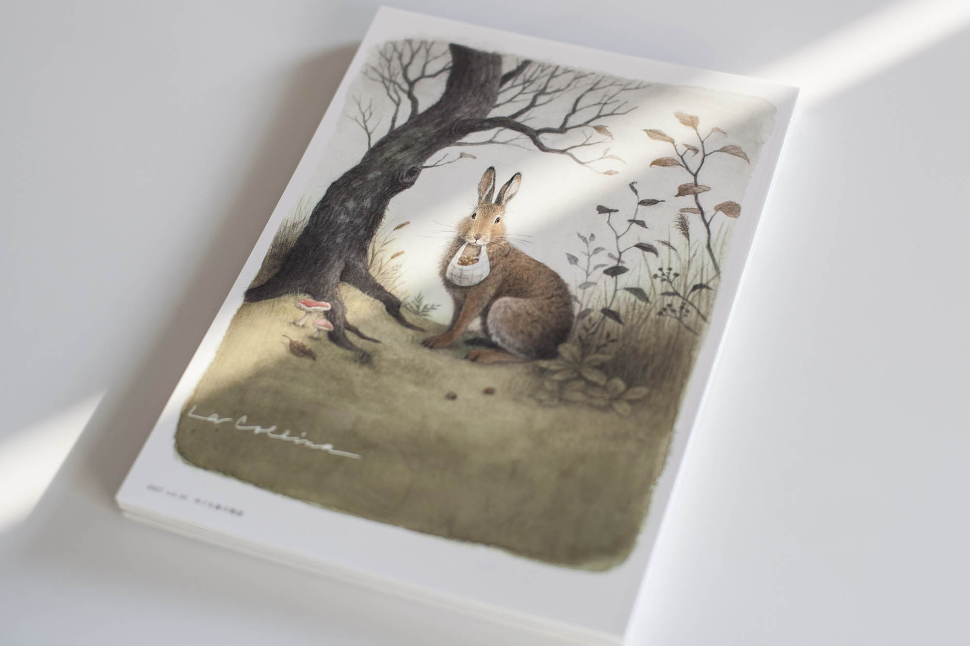La Collina vol.10 めぐる森の物語